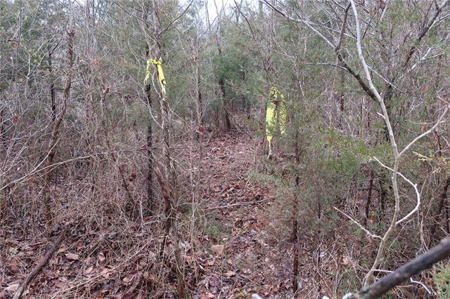 0 9.04 Acres - Dittmer  Road -4