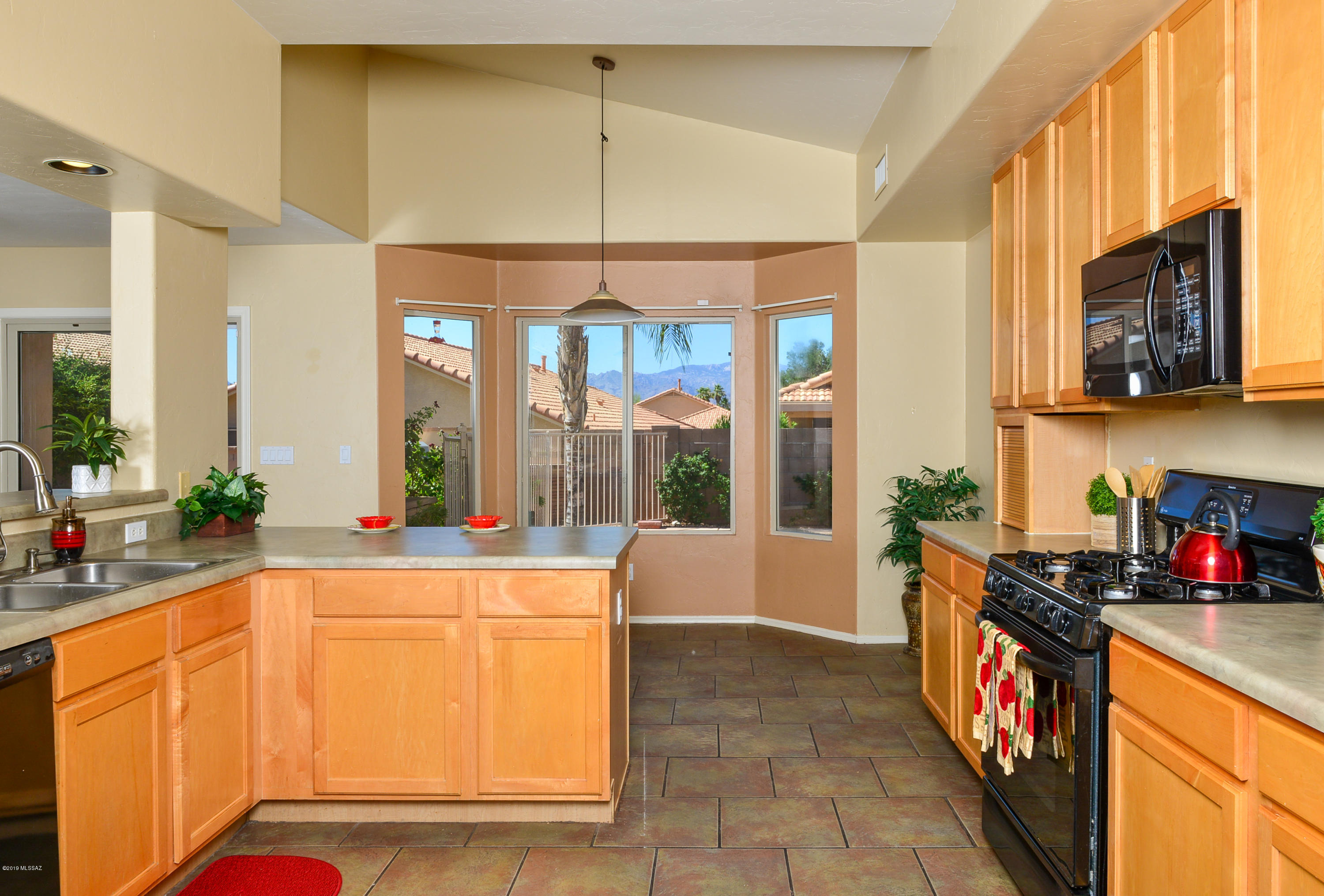 10267 E Buffaloberry Loop-12